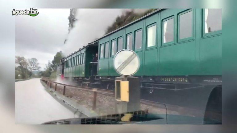 Comboio Histórico a Vapor regressa à Linha do Vouga 20 anos depois